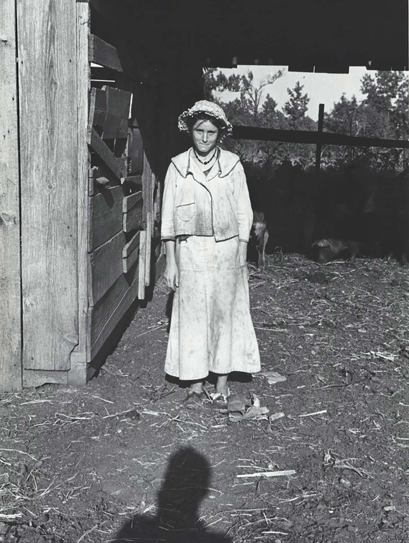 The Exacting Eye of Walker Evans   Florence Griswold Museum