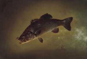 "Gurdon Trumbull, ""Black Bass,"" 1872, Oil on canvas, 17 ½ x 25 1/8 in., Florence Griswold Museum"