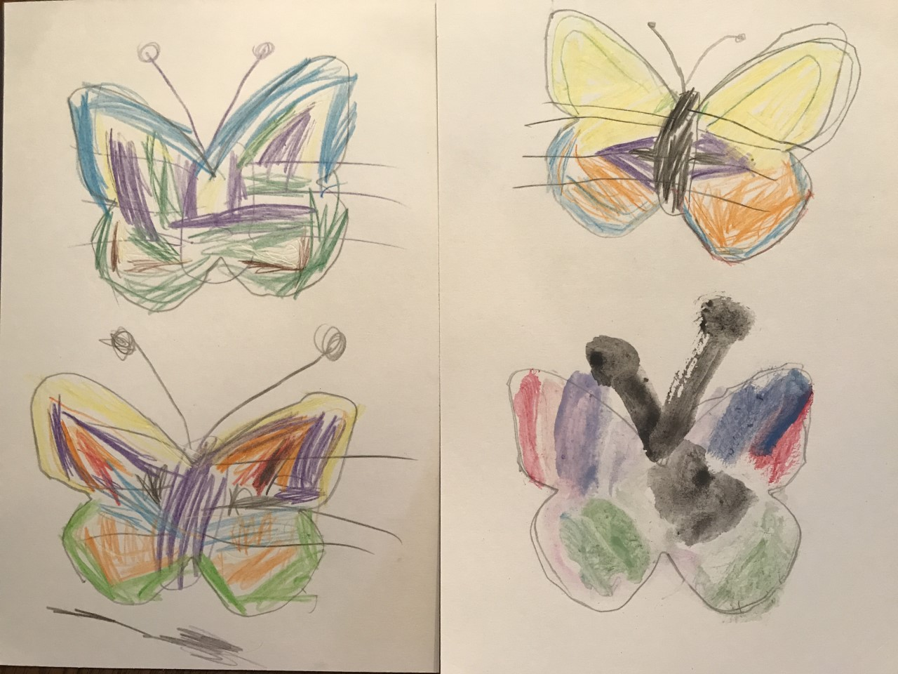 Eli was especially inspired by the butterflies!