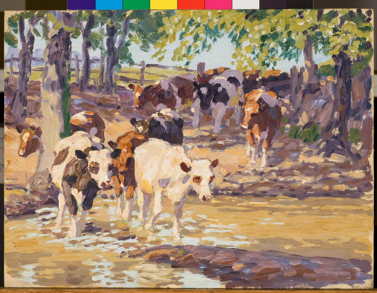 Untitled [Cows]