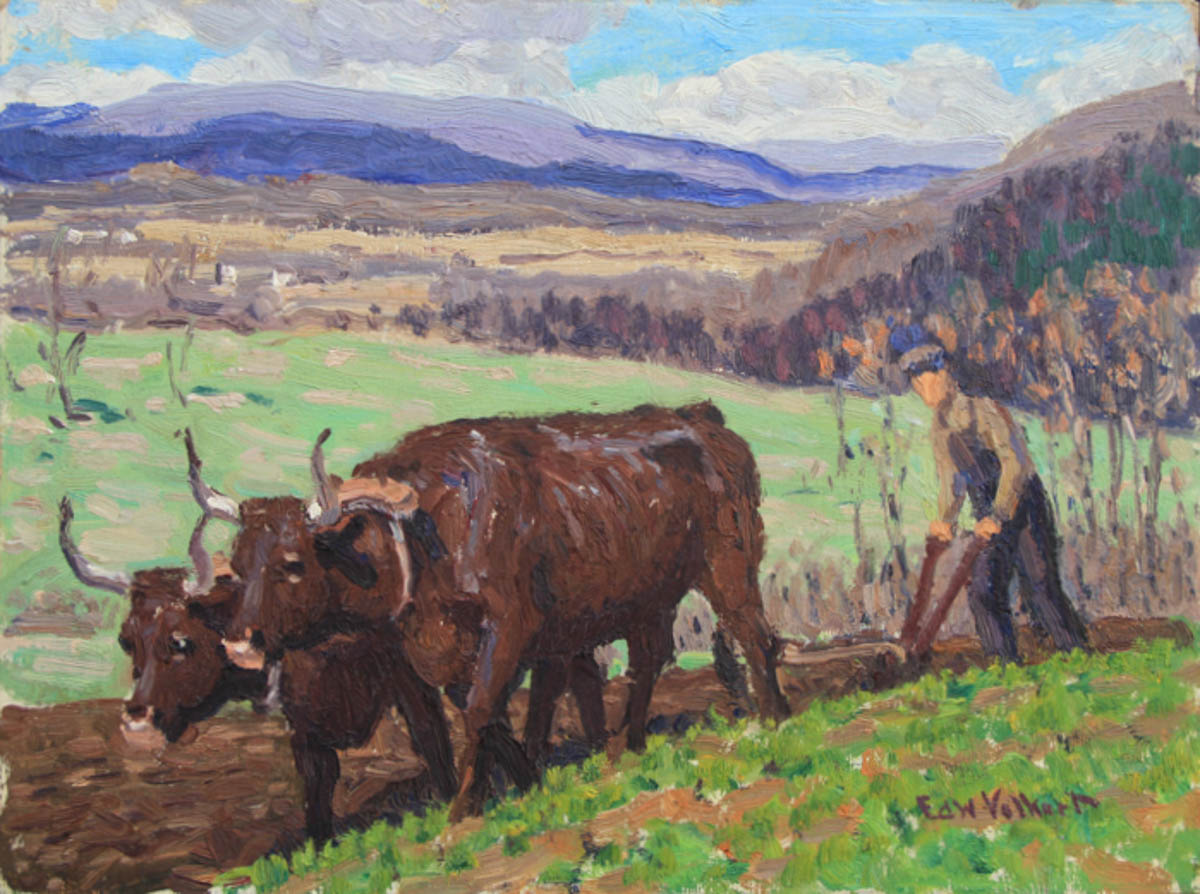 Untitled [Two Brown Oxen with Man Plowing Field]