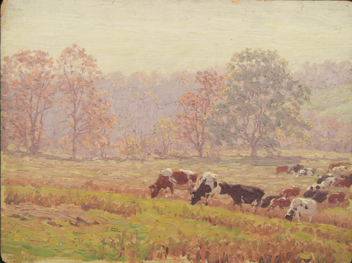 Untitled [Holsteins and Guernseys grazing in pasture]