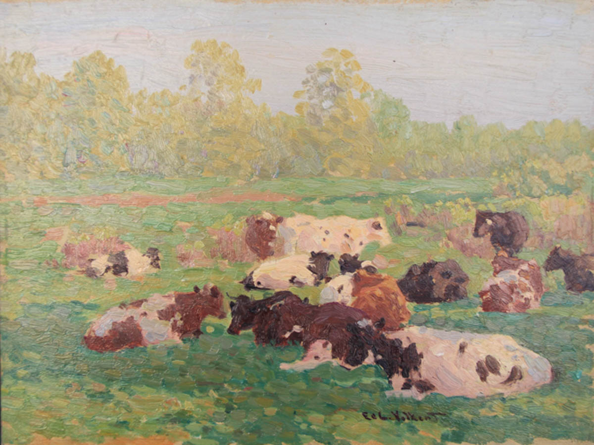 Untitled [Guernseys and Holsteins Lying in Field]
