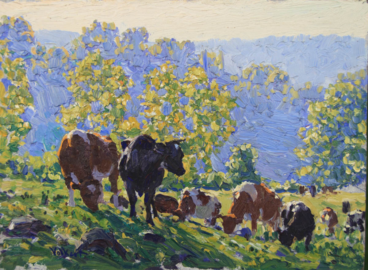 Untitled [Guernseys and Holsteins on hill, shady foreground with sunlight behind]