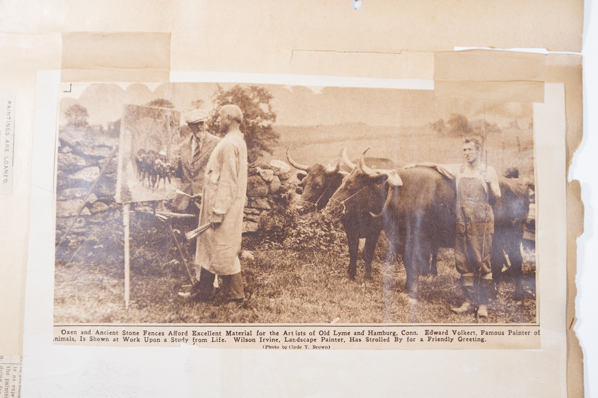 Edward Volkert working from oxen as models