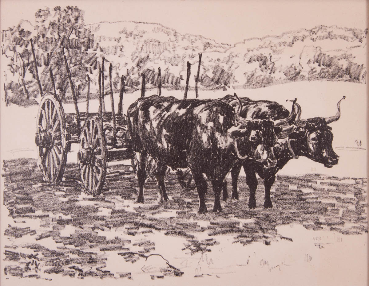 Untitled [Oxen and cart]