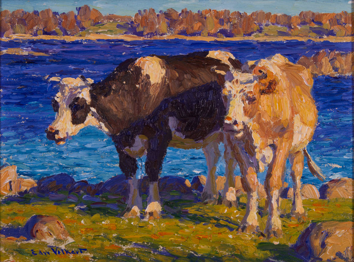 Untitled [Two cows, Holstein and Guernsey, by water]