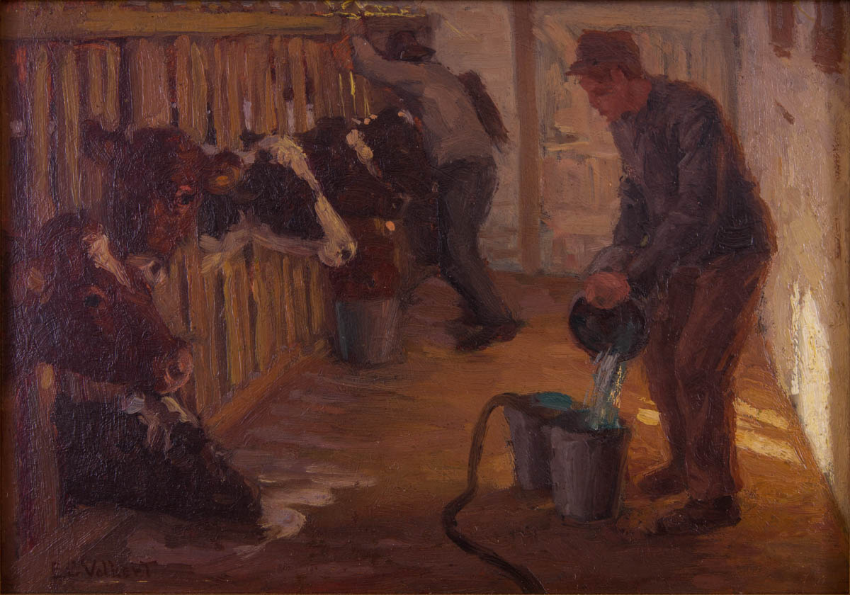 Untitled [milking cows in the barn]