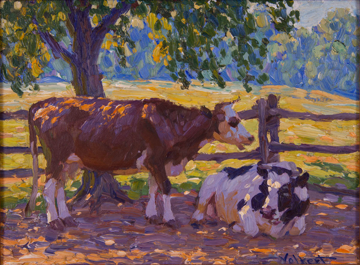 Untitled [two cows under shade near fence]