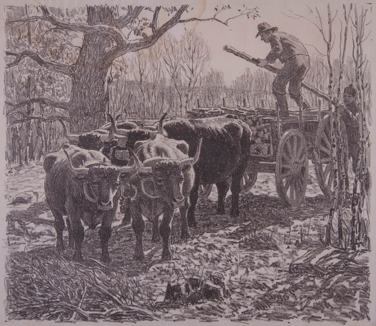 Untitled [Farmers loading wood into ox cart]