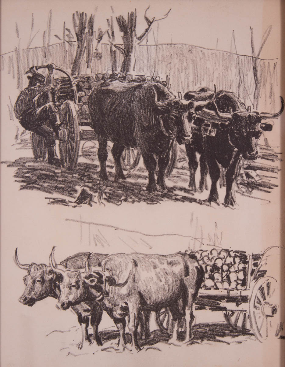 Untitled [Two views of oxen and wagons]