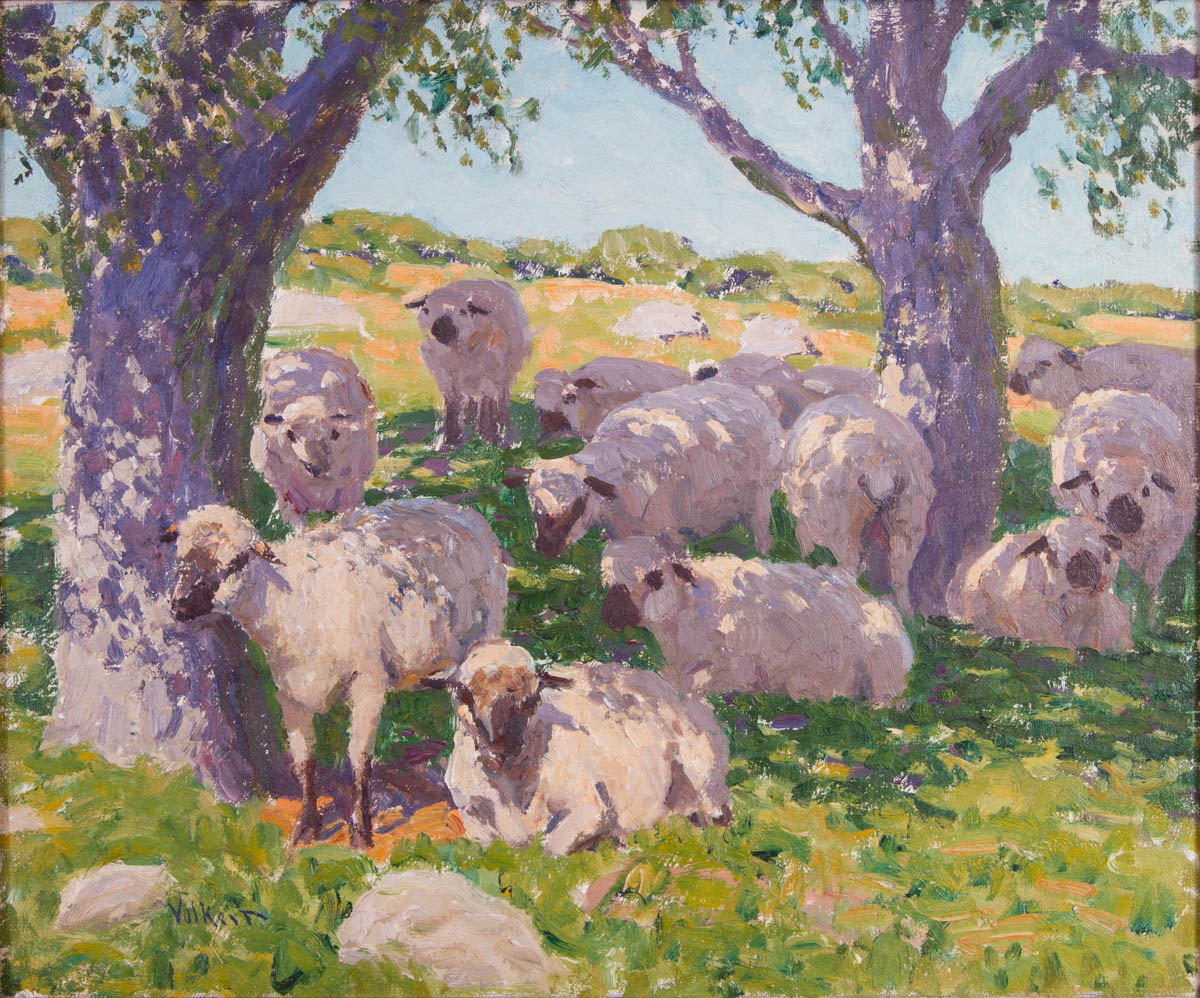 Untitled [Sheep resting under shade trees]