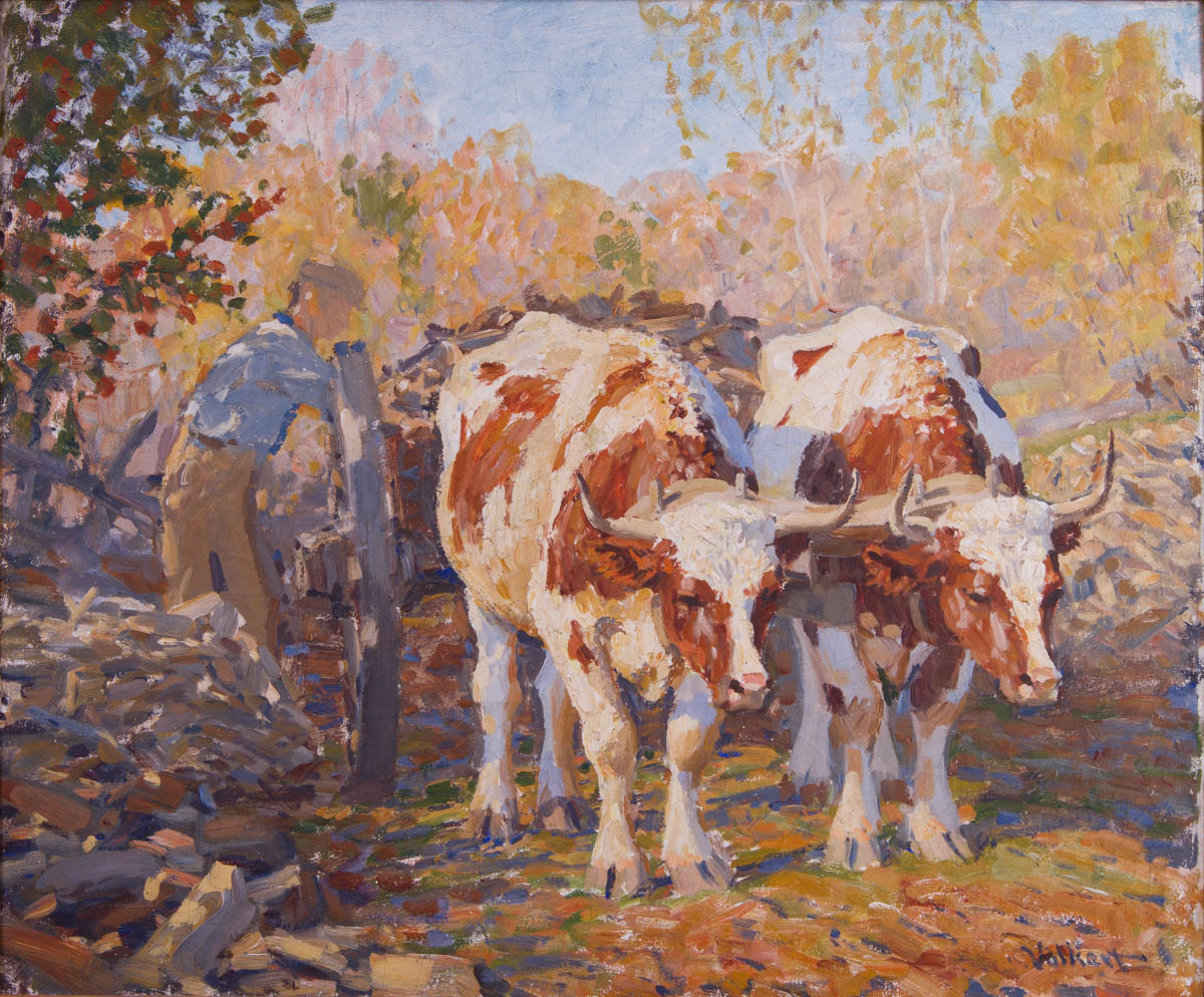 Untitled [Man loading cart hitched to white and brown oxen]