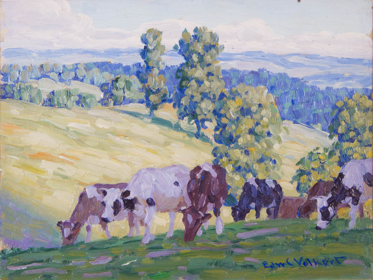 Untitled [Cattle grazing in the shade]
