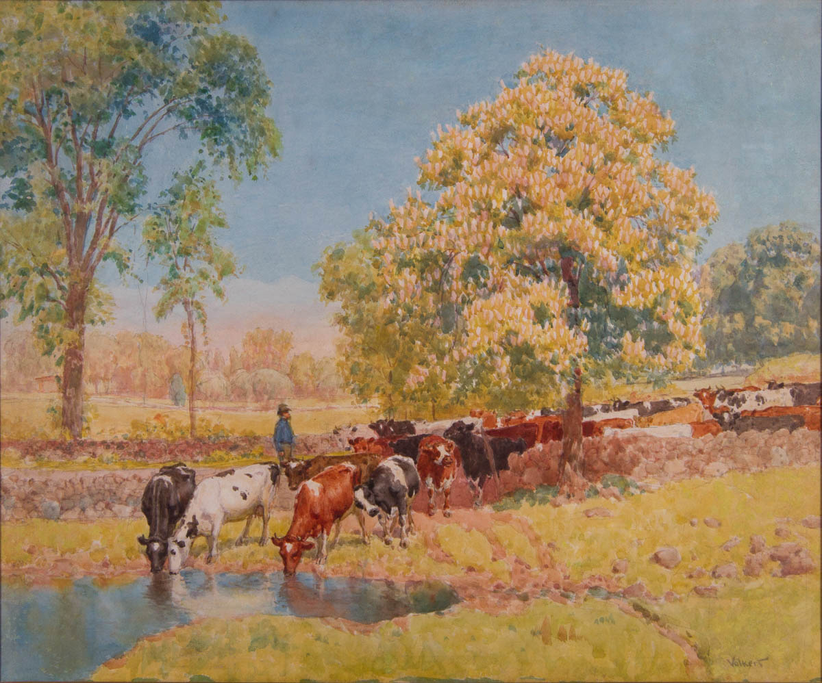 Untitled [Cattle at watering hole]