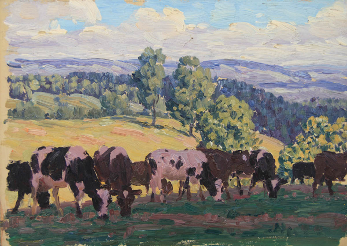 Untitled [Holsteins and Guernseys grazing in shade on hill]