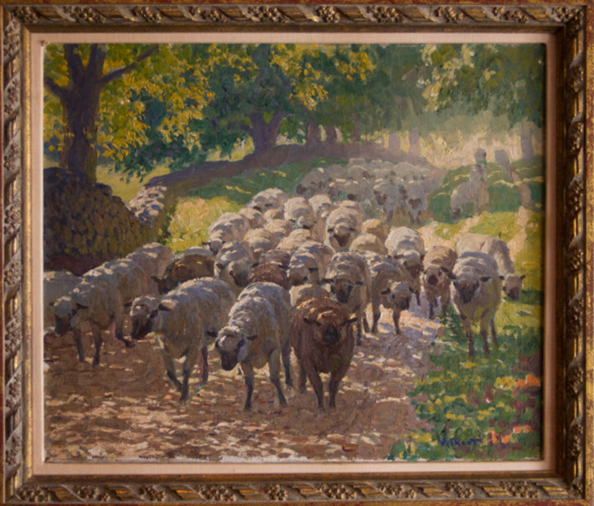 Untitled [Sheep on road with one brown animal in front]