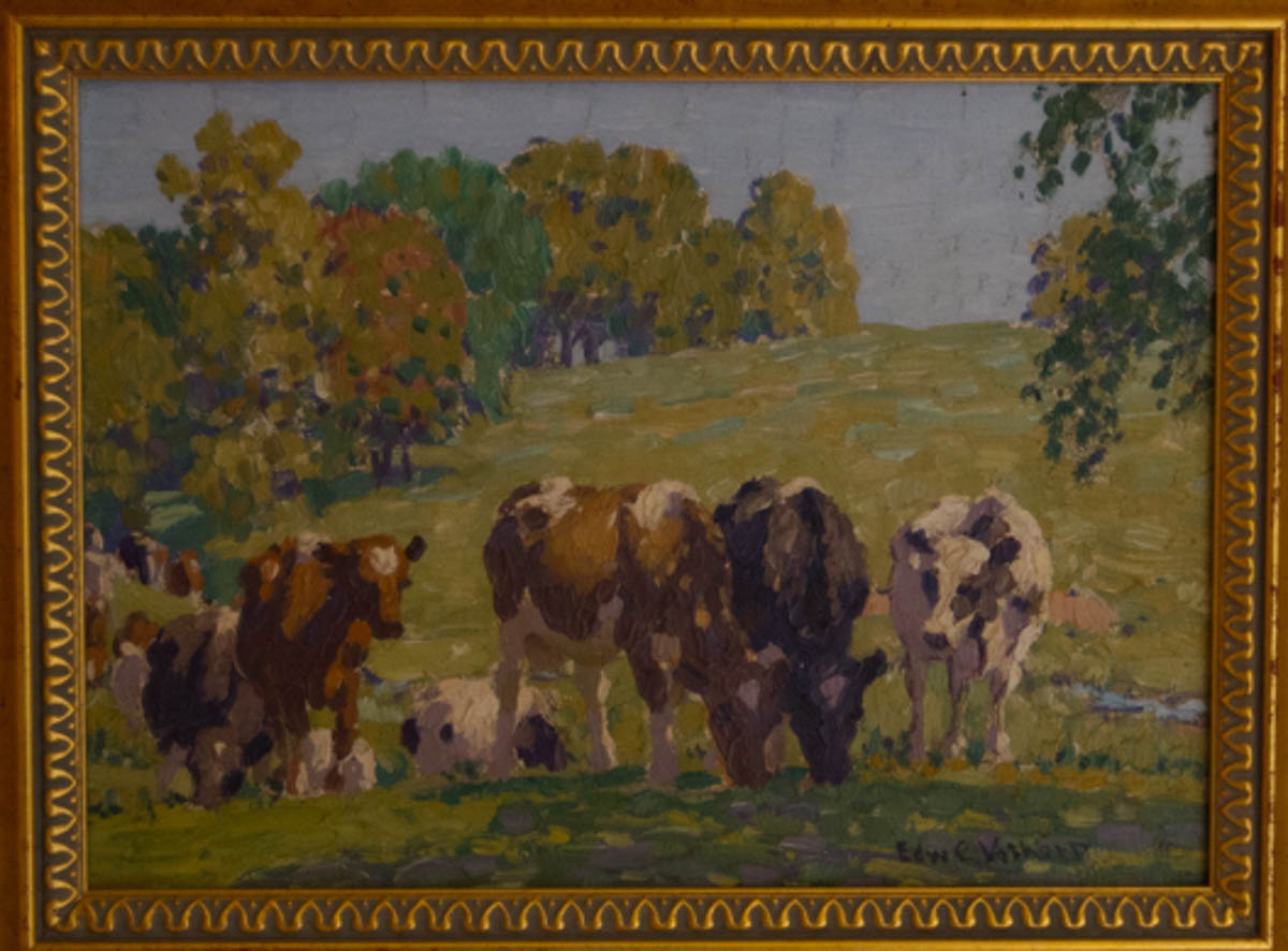 Untitled [Black and brown cattle grazing with heads together]
