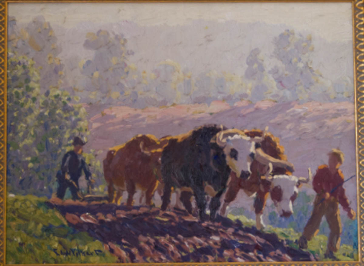 Untitled [Oxen plowing with two men]