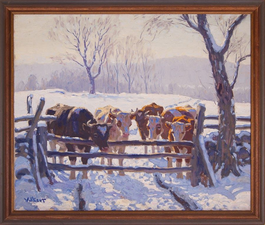 Snow Scene[Cows at Barway]