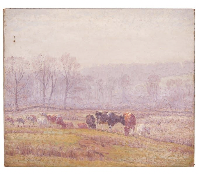 Untitled [Guernseys and Holsteins in misty field